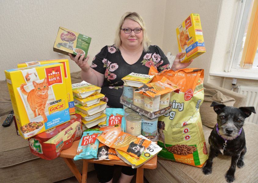 Pet Food Bank Launches In Market Harborough Harborough Mail