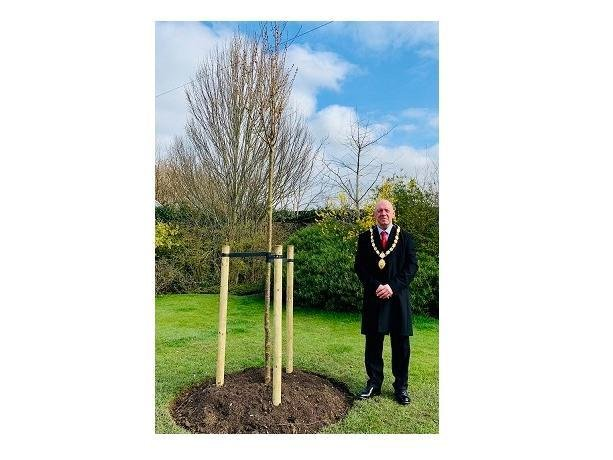 Cllr Stephen Bilbie, the chairman of Harborough council, with one of the trees.