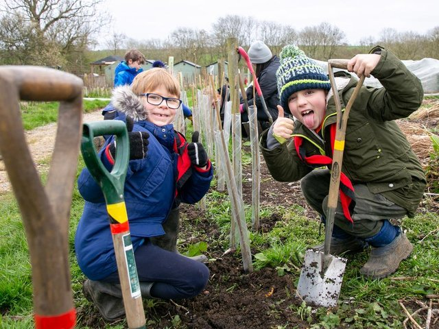 Cubs and scouts from Harborough plant almost 2,000 trees to help the environment (c) Nick Osborne