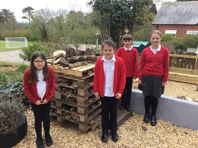 Children at Dunton Bassett Primary School enjoying outdoor classroom.