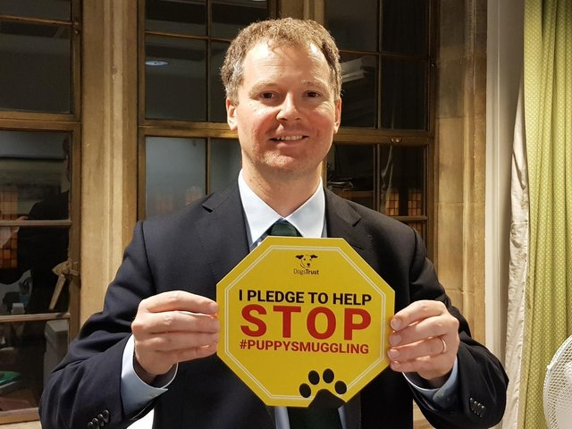 The Government's move to set up a new taskforce to investigate and combat soaring dog thefts is being backed by Harborough MP Neil O'Brien.