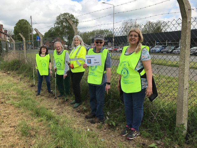 The sunflowers were planted by rotarians and supplied by LOROS as part of the charity's campaign to highlight the need for compassion in and around Market Harborough.
