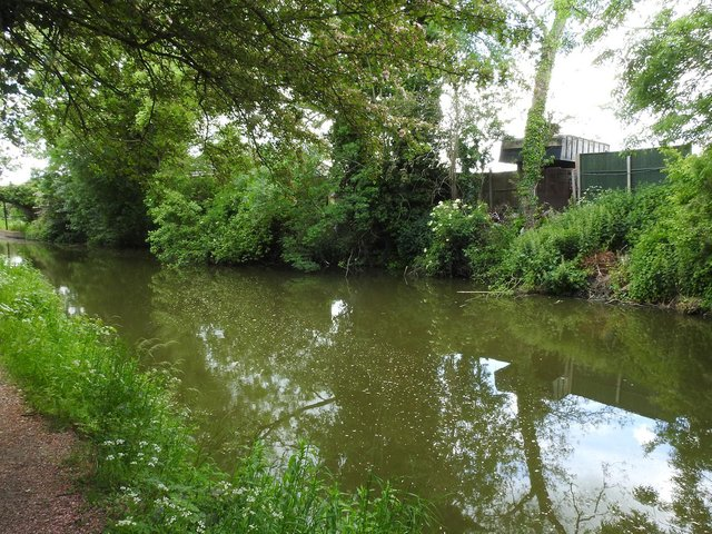 Our photographer Andy Carpenter took these photos of the banks and towpath of the Grand Union Canal - which now look much cleaner.